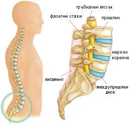лечение боли в позвоночнике при остеохондрозе